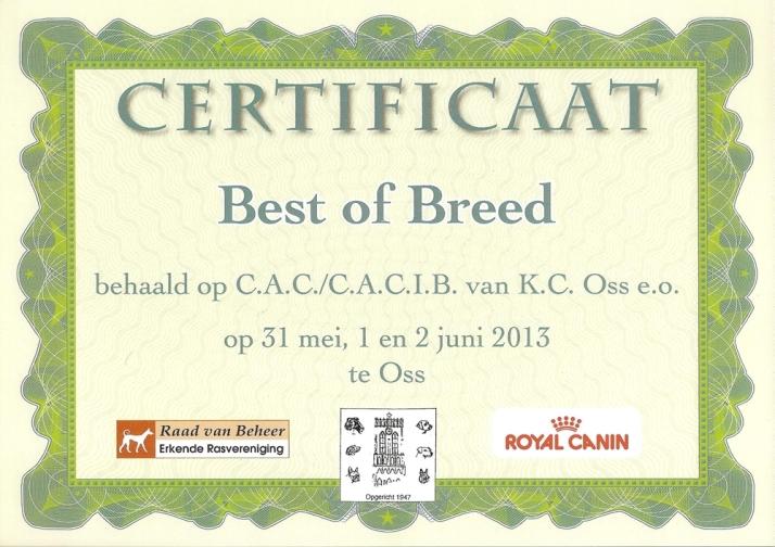 06 01 Oss BOB certificaat blog