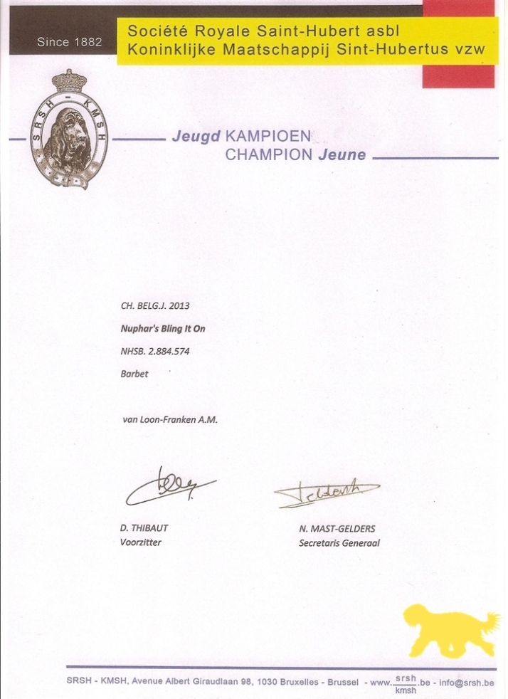 Blog Diploma Belgisch Jeugdkampioen