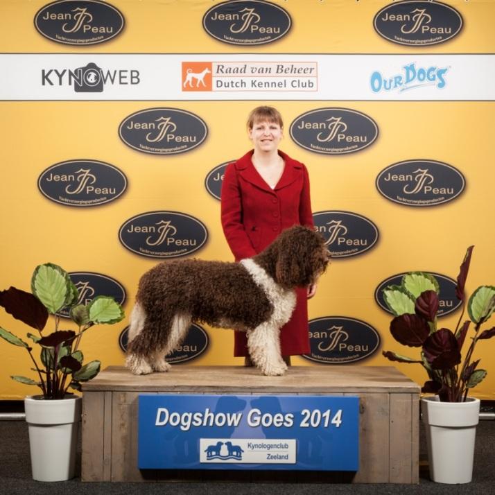 183_Dogshow GOES_2014_Kynoweb- Ernst von Scheven_April 19, 2014_09_43_34
