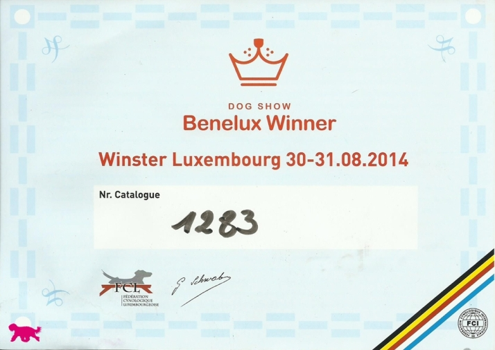 Blog Luxemburg Benelux Winster