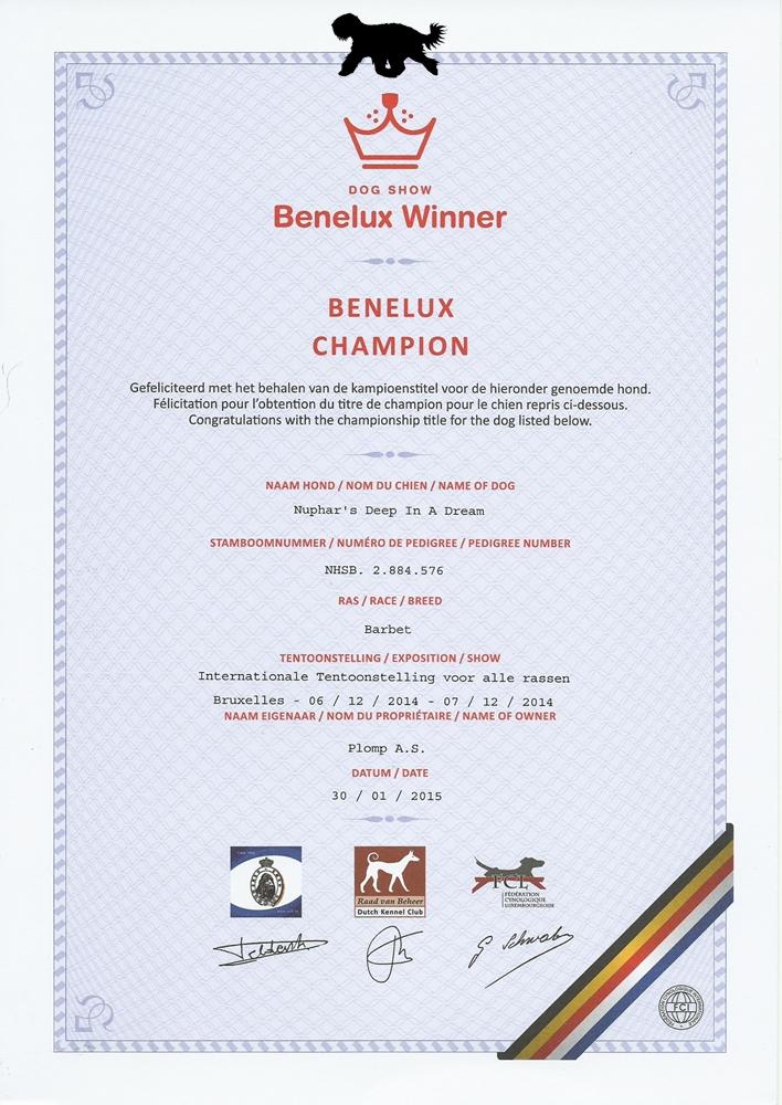 Blog Benelux Kampioen