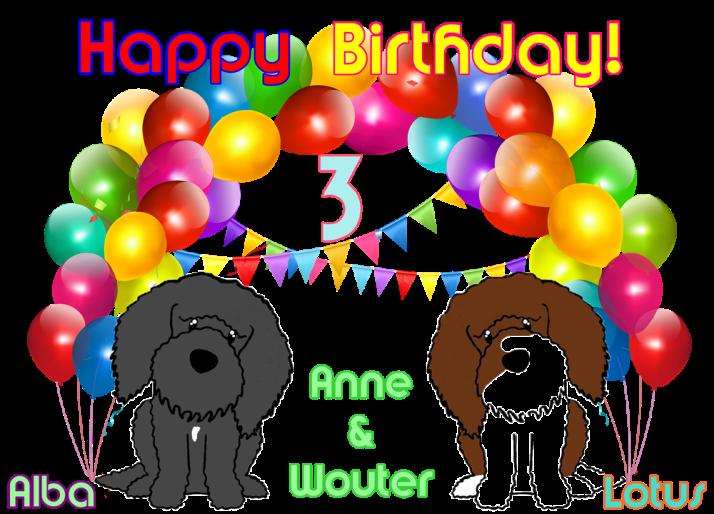 Verjaardagskaart blog